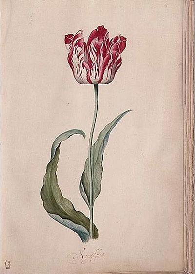 10 bức hoạ về hoa nổi tiếng