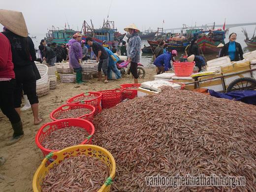 Nhộn nhịp chợ cá Cồn Gò