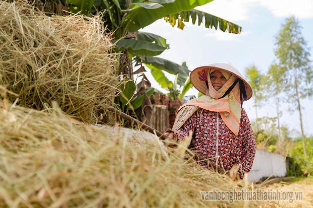 Rộn ràng mùa gặt