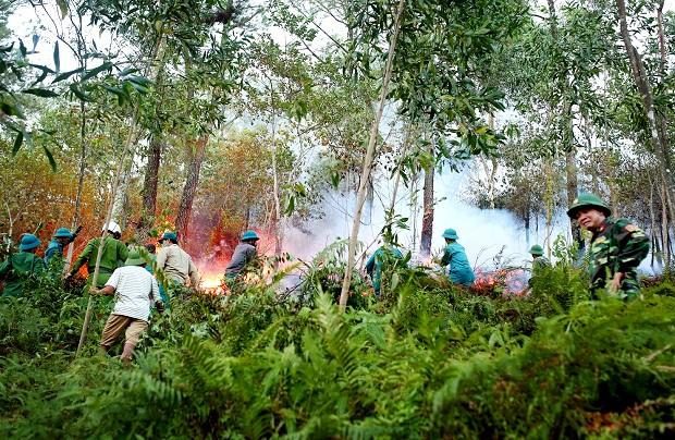 Bùng phát cháy rừng tại huyện Hương Sơn