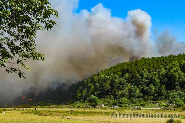 Chùm thơ kết vụ cháy rừng Hà Tĩnh ( kỳ cuối)