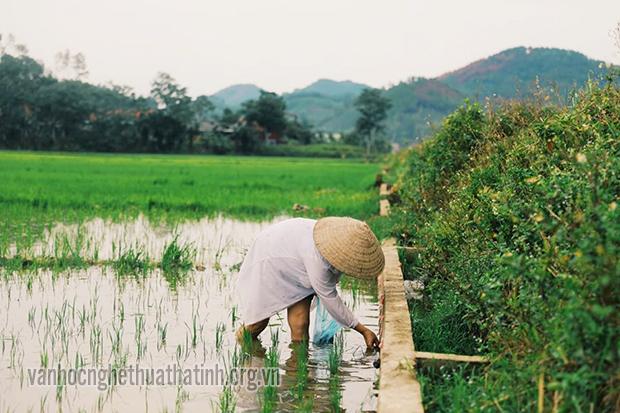 Hương Sơn hồi sinh sau cơn mưa