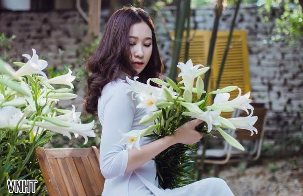 Rực rỡ hoa loa kèn chào Tháng Tư