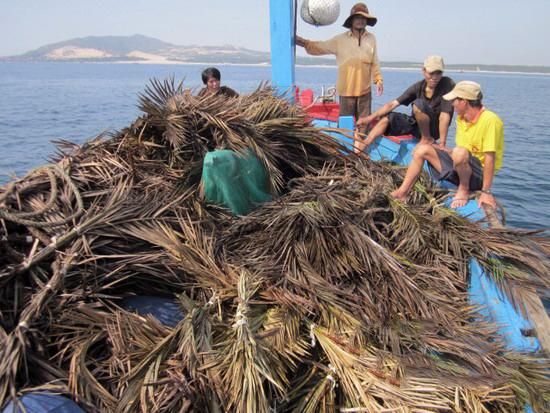 Phương thức thả rạo ở Nhượng Bạn và một số xã vùng biển Hà Tĩnh